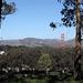 San Francisco National Cemetery (3045)