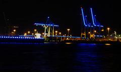 Kräne am Container-Terminal Tollerort während des Blue Ports