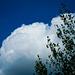 J'aime ce cumulus...