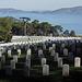 San Francisco National Cemetery (3049)