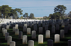San Francisco National Cemetery (3050)