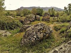 H. A. N. W. E., everyone! Near Las Navas de Buitrago, lichen playground! (best on full screen).