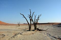 Namibia, Morning at Deadvlei