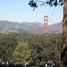 San Francisco National Cemetery & Golden Gate Bridge (3046)