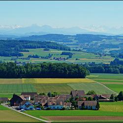 Schmidholz und Blick in Richtung Glarner Alpen
