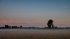 Kuz vor dem Sonnenaufgang