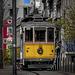 Un tramway nommé 143 ou 341