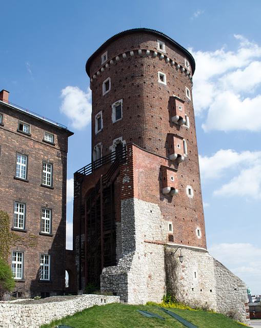 Poland, Krakow Wawel Castle (#2404)