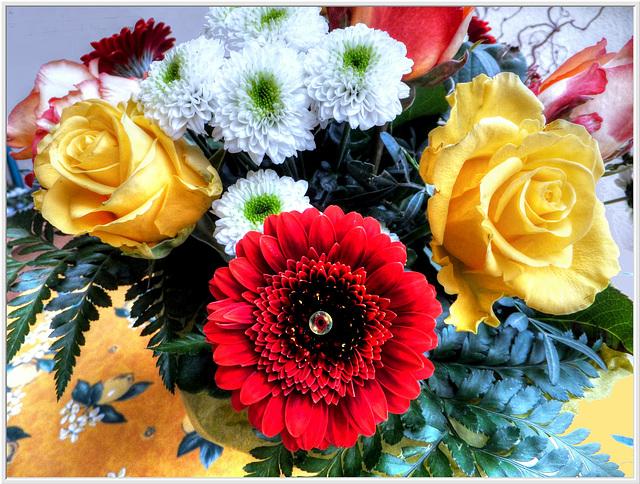 Gold Roses... ©UdoSm