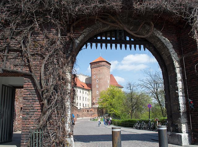 Poland, Krakow Wawel Castle (#2406)