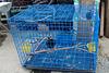 Prison bleue du Laos / Blue jail in Laos