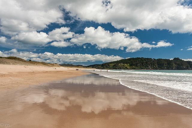 Hot Water Beach (PiP)