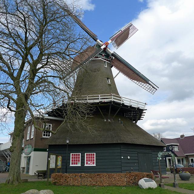 Nederland - De Wijk, Wieker Meule