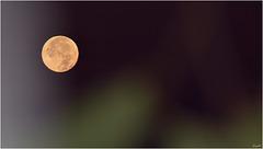 Pleine Lune du 25/10/2018