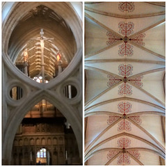 Wells Cathedral Nave Ceiling & Arches.