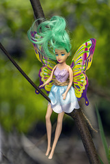 Wee Fairy