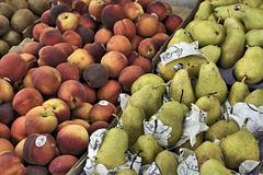 Pears and Nectarines – Marché Jean-Talon, Montréal, Québec, Canada