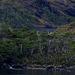 Chiloé Archipelago  70