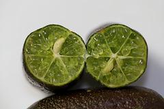 Citron caviar- Microcitrus australasica