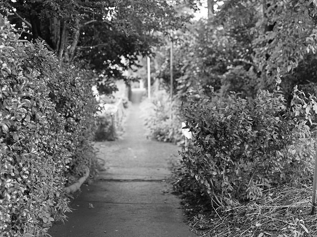 Covert path