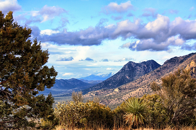 The Huachuca Mountains & Mt Wrightson