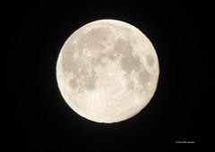 Ostermond [6] ... von der Betrachtung des Mondes ...