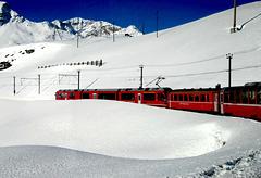 Bernina Express fence (s)