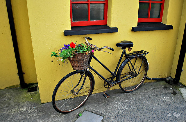 Bunratty Bike