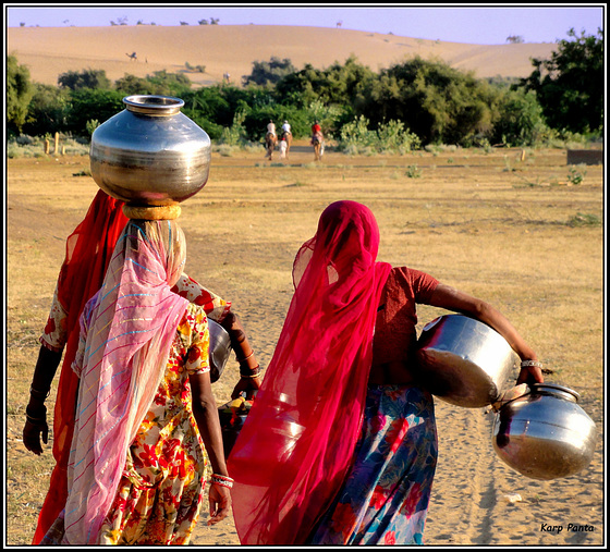 """""""Oasis in the Thar desert"""" - Rajasthan - INDIA"""
