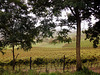 benvenuto autunno - Vigneti in Langa