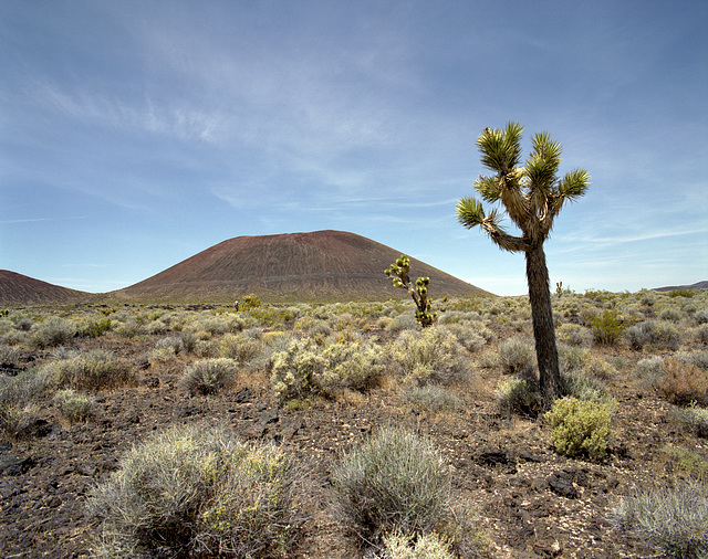 Mojave Cinder Cone