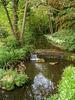 Weir in the stream.