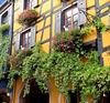 J'adore ces façades / I adore these facades!!!!