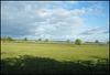 Woodstock landscape