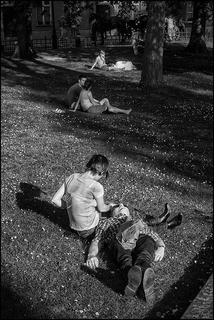 Repos sur l'herbe.