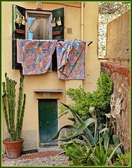 Boccadasse : Panni stesi multicolor - (875)