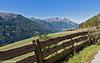 Weidezaun - Pasture Fence