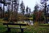 Winter 2015: Still ruht der See ...  Silent lies the lake ...    Mit PiPs