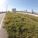 Alexander Zuckermann Bicycle-Pedestrian Path (0016)
