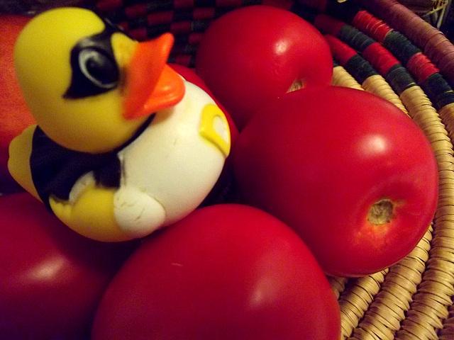 """""""¿Qué? Tenemos sólo cinco tomates?"""""""