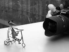 """""""Le Paparazzi"""" ."""