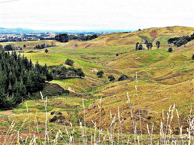 Far Away Across Hills.
