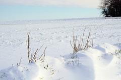 Farben des Winters - Winter colours
