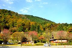 Shirakagawo  (白川郷)