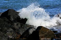 West Quoddy Rocks & Surf (2)
