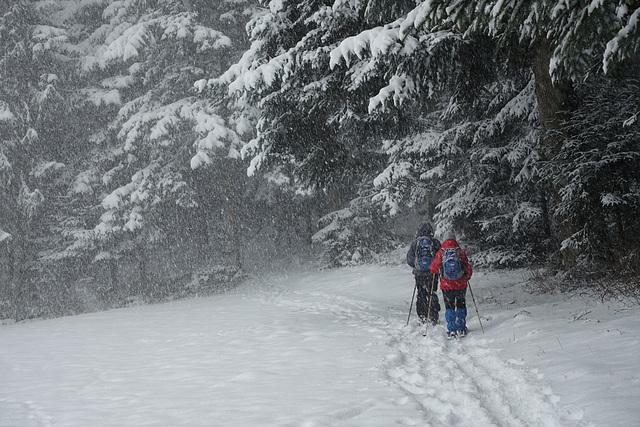 Heavy snowfall...