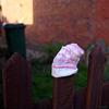 TLOP: pink stripy sock
