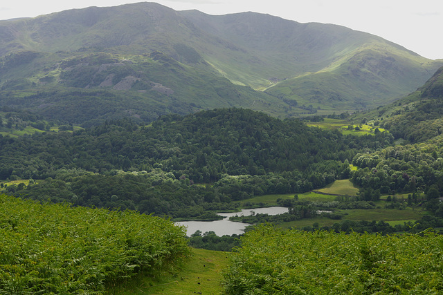 Wetherlam and Elter Water