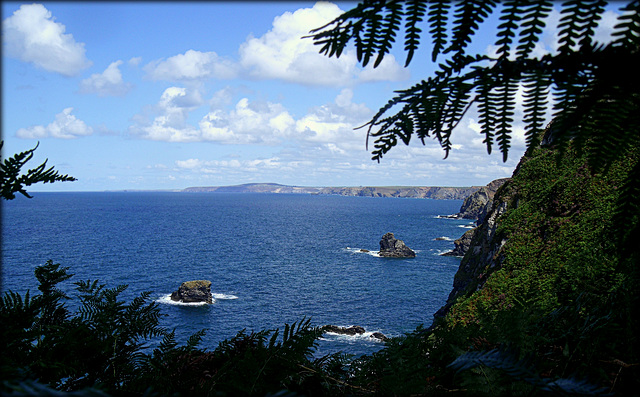 From the cliff path to Fishing Cove, Reskajeage