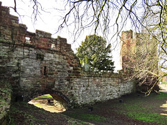 water tower spur, town walls chester